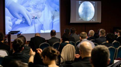 International Warsaw Ablation Workshops 2017